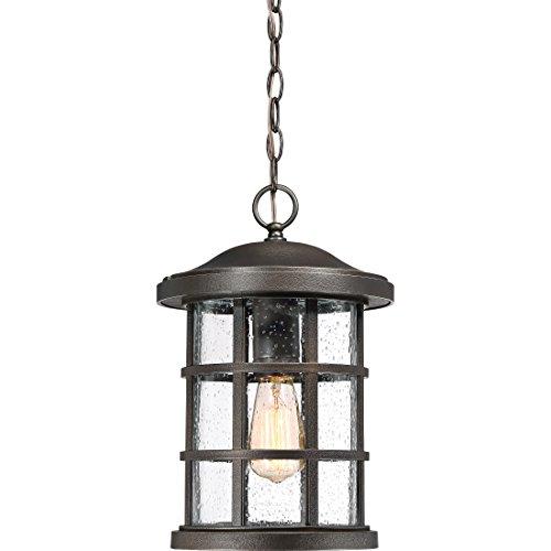 Quoizel CSE1910PN Crusade Outdoor Pendant Lighting, 1-Light, 150 Watts, Palladian Bronze (16