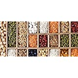 VISA STORE Pinto Bs - 50 Seed: Vegetable Seeds Emergency Seeds Non GMO Packed Mix and Match