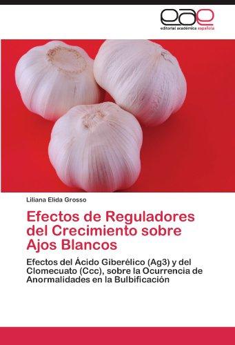 Efectos de Reguladores del Crecimiento Sobre Ajos Blancos
