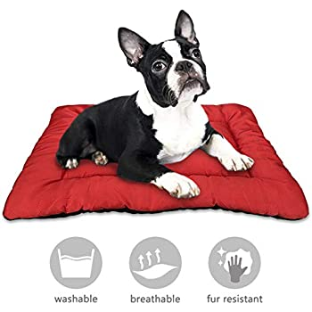 Amazon.com: AIPERRO - Cama para perro, almohadilla lavable ...