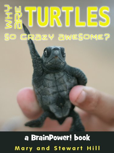 Why Are Turtles So Crazy Awesome? (BrainPower! Books)