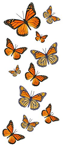 55 Monarch Butterfly Temporary