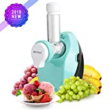 Secura Healthy Frozen Fruit Dessert Maker, Ice Cream Frozen Yogurt Sorbet and Frozen Fruit Treats, Includes Free Recipe Book