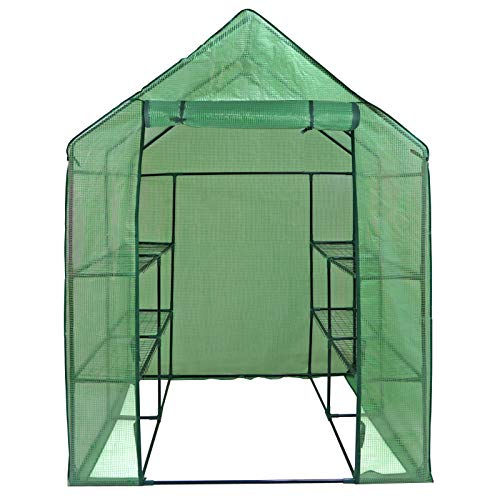 All Season Greenhouse - ZENY Mini Walk-in Greenhouse with PE Cover Portable Plants Flower Garden House Indoor Outdoor 2 Tiers 8 Shelves and Roll-up Zipper Door