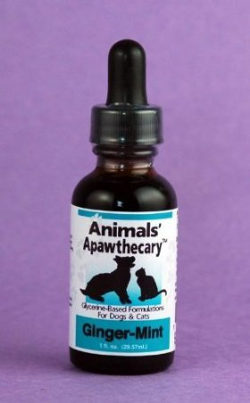 Image of 0ANIV Animals' Apawthecary Ginger-Mint for Dogs and Cats, 1oz