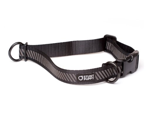Stunt Puppy Everyday Collar Black