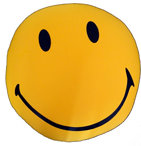 (Tache 14 x 14 Inch Squishy Traditional Have a Great Day Yellow Smiley Happy Face Emoji Emoticon Microbead Throw Cushion Pillow)