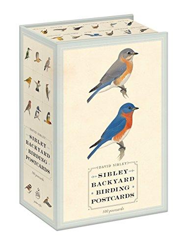 Postcard Note Card - Sibley Backyard Birding Postcards: 100 Postcards (Sibley Birds)
