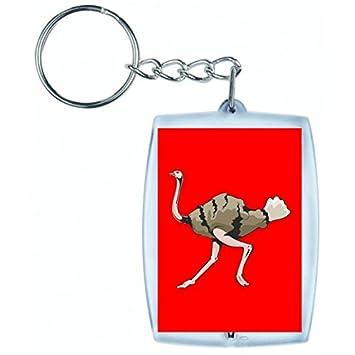 Schlüsselanhänger Strauß Straußevogel Läuft Vogel Rennen In Rot