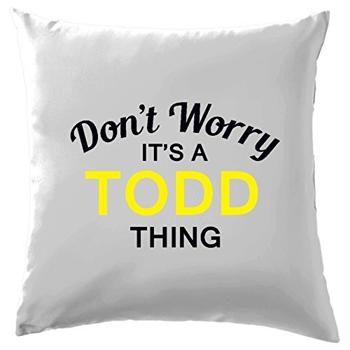 Don't Worry It's a TODD Thing! Cushion Cover Pillow Case Cover 22