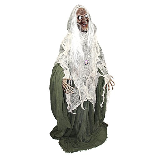 Scary Halloween Witches (Halloween Haunters 5 foot Animated Standing Scary Evil Wicked Witch Prop Decoration - Turning Head, Moans, Cackles, LED Eyes)