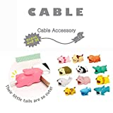 12 Pieces Cable Bites Cute Animal Cable Accessory for iPhone Cables Protector (Dog + Shark+Crocodile+Wave Point Shark+Seal+Rabbit+Tiger+Cat+Panda+Axolotl+Hedgehog+Lion+Pig)Animal bite Cable Protector