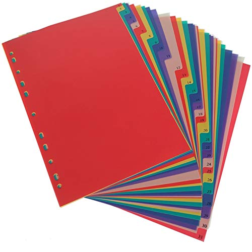 A4 Plastic Binder Index Tab Dividers, Reinforced 11 Hole Design Fits Most Sizes of Ring Binder, 31 Multi-Color Tabs (8 1/4