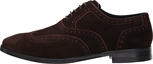 Cole Haan Mens Cambridge Vingspets Oxfordskor Kastanj Leds