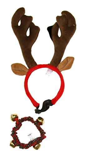 - Outward Hound Kyjen  Holiday Bell Collar and Antler Combo Pack Wearable Christmas Accessories for Dogs, Large, Green