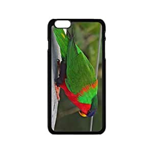 Th Green Feather Parrot Hight Quality Plastic Case for Iphone 6