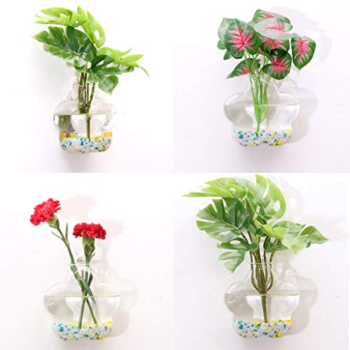 LLJEkieee 2 X Glass Planters Pots Glass Planters Wall Hanging Planters Round Air Plant Pots Wall Plant Container