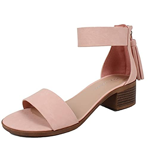 784912ede08 City Classified Women s Open Toe Ankle Strap Tassel Low Block Heel Sandal  delicate