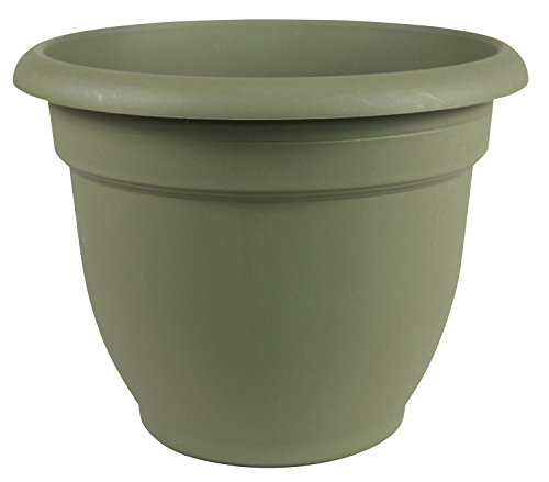 Bloem Fiskars 12 Inch Ariana Planter with Self-Watering Grid, Thyme Green (20-56412) by Bloem