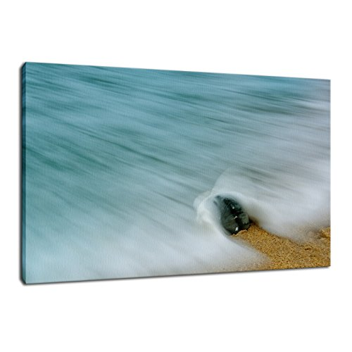 Whelk Seashell and Misty Wave, Coastal Nature Photography Limited Edition Stretched Fine Art Canvas - Limited Nature Home Edition Art