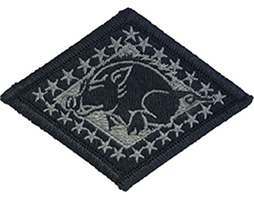 - Arkansas National Guard ACU Patch - Foliage Green