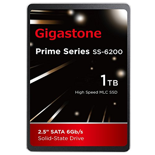 Gigastone 1TB SSD Intel MLC 2.5'' SATA 3 Solid State Drive [Performance HD Upgrade for HP Dell Samsung Sony Asus PC, Apple Mac, Macbook, Laptop, Notebook Ultbook, Gaming, Video Editing, Server, Raid] by Gigastone