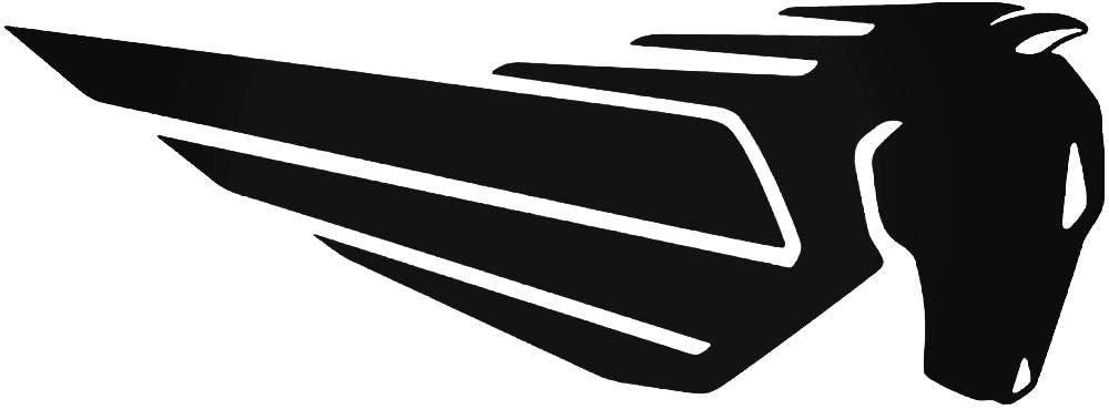 Supersticki Buell Logo Ca 20cm Motorrad Aufkleber Bike Auto Tuning Aus Hochleistungsfolie Aufkleber Autoaufkleber Tuningaufkleber Hochleistungsfolie Für Alle Glatten Flächen Uv Und Waschanl Auto