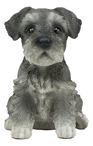 "Ebros Realistic Miniature Schnauzer Puppy Statue 6.5"" Tall Animal Dog Collectible Lifelike Schnauzer Figurine Decor"