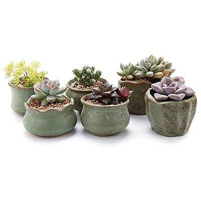 T4U Ceramic Succulent Planter Pot, Small Cactus Plant Pot Round Container Window Box Home and Office Decoration Desktop Windowsill Bonsai Pots Gift Ornament for Gardener Wedding Birthday Christmas
