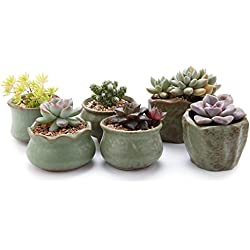 "T4U 2.75-3""Spring Serial Sets Sucuulent Cactus Plant Pots Flower Pots Planters Containers Window Boxes Green 1 Pack of 6"