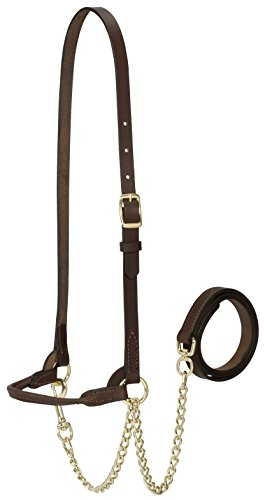 Weaver Leather Livestock Dairy Halter, Small, Brown