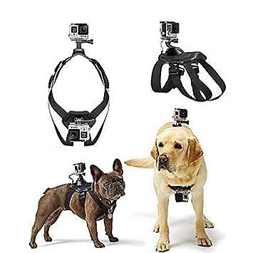 Todwish perro de búsqueda de montaje para correa de cinturón de arnés de pecho para cámaras