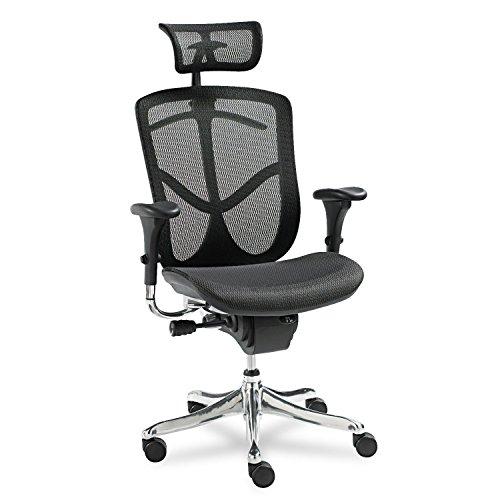 Series Eq - Alera EQ Series Ergonomic Multifunction High-Back Mesh Chair, Aluminum Base
