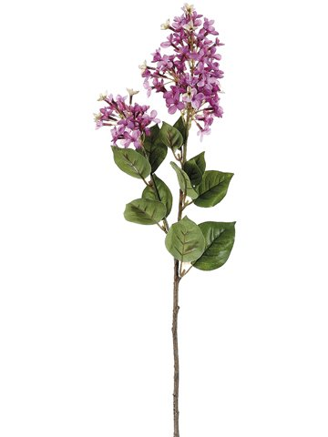 285-English-Lilac-Spray-Two-Tone-Lilac-Pack-of-12