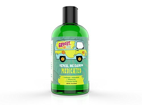 Groovy Pets Medicated Shampoo for Dogs Concentrated Oatmeal Dog Shampoo with Tea Tree Oil Soothing Itchy Skin Infections like Hot Spots Flea & Tick Bites- Ringworm Soap Free All Natural Dog Shampoos
