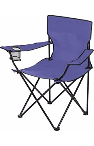 Dick's Sporting Goods Logo Chair - Great for Camping, Back Yard, Sporting Events (Purple)