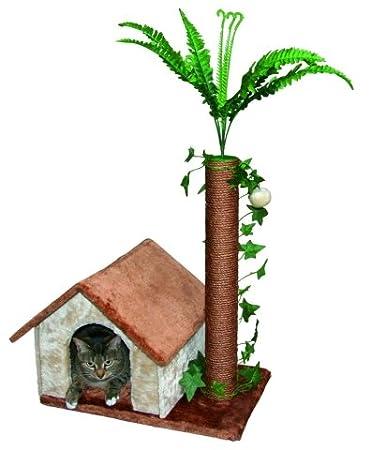 kratzbaum palme