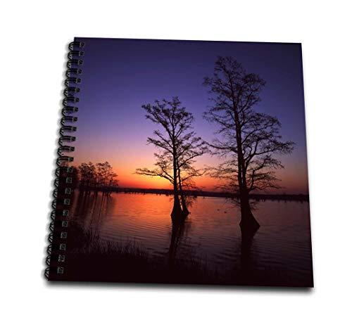 Danita Delimont–Trees–Reelfoot National Wildlife Refuge、テネシー州、米国–us43aje0297–アダム・ジョーンズ–Drawing Book 8` x 8` db_146503_1