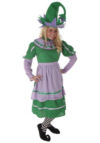 Fun Costumes Plus Size Munchkin Girl Costume (Munchkin Costumes Wizard Of Oz)