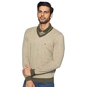 blackberrys Men's Cotton Sweater