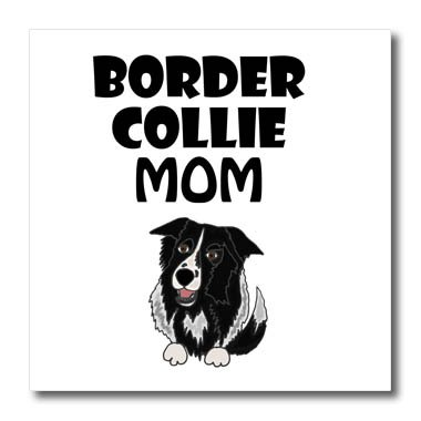 3dRose All Smiles Art Pets - Funny Cute Border Collie Mom Cartoon - 8x8 Iron on Heat Transfer for White Material (ht_263863_1)
