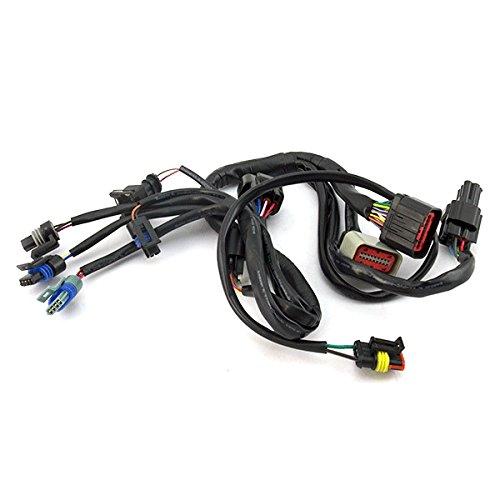 EFI System Wiring Loom (WRLM148):