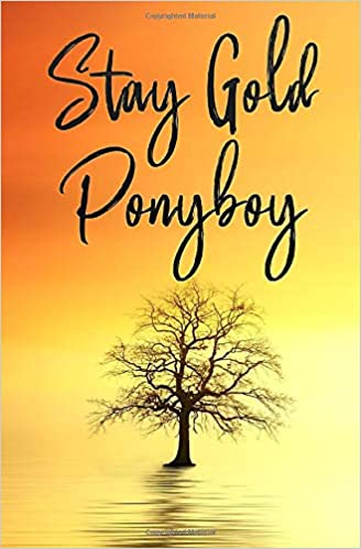 Stay Gold Ponyboy Notebook A Lined Notebook Inspirational Motivational Quotes Stay Gold Ponyboy Stay Gold Books Hinitos 9781651735145 Amazon Com Books To stay gold means to remain unspoiled, pure, and fresh. stay gold ponyboy notebook a lined