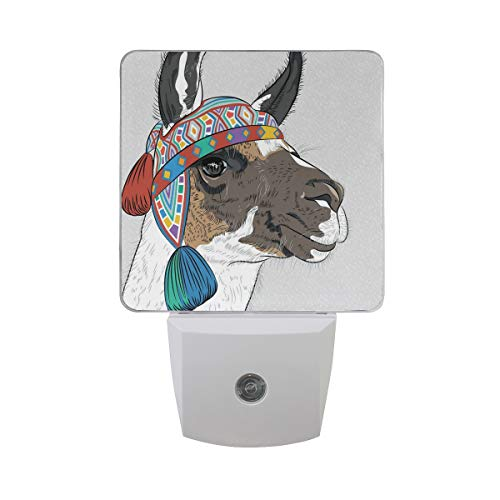 Acrylic Peruvian Hat - Colorful Plug in Night,Alpaca with an Ethnic Colorful Hat Peruvian Sketch Style Animal Abstract Pattern,Auto Sensor LED Dusk to Dawn Night Light Plug in Indoor for Childs Adults