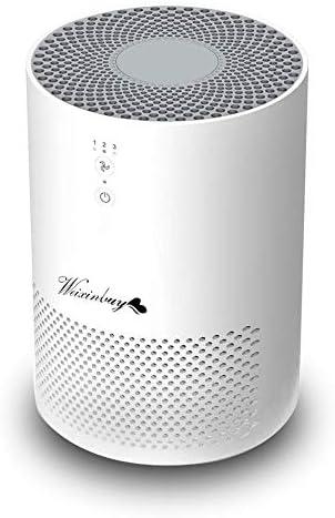 Weixinbuy Purificador de Aire, purificador de Aire de 360 ° con ...
