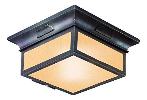 Troy Lighting Newton 2-Light CFL Flush Mount - Old Bronze Finish with Amber Mist Glass