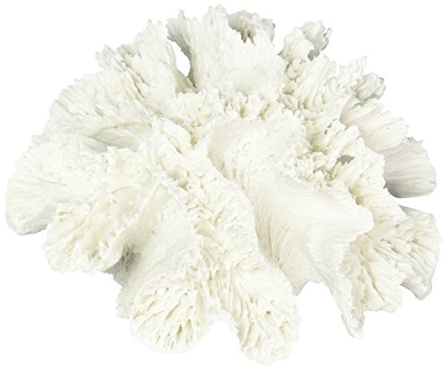 Abbott Collection Coral Flower, White (Small)