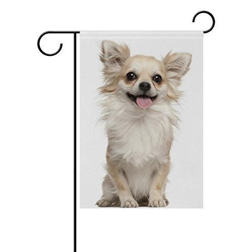 Chihuahua Dog Garden Flag - ALAZA Cute Chihuahua Dog Decorative Double Sided Garden Flag 12 x 18 inch