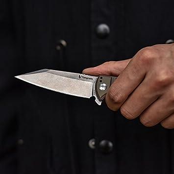 TANGRAM Folding Pocket Knife ACUTO440 Wharncliffe Sharp Blade Liner Lock G10 Handle Flipper Knife,Dirk Pinkerton Orion TG3007A2
