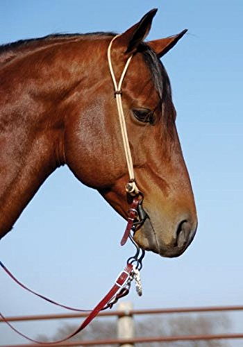 - Nrs-Berlin Custom Leather Rope Series Headstall